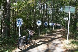 岳公園サイクリングロード
