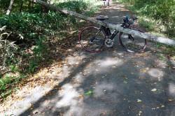 八ヶ岳サイクリングロード