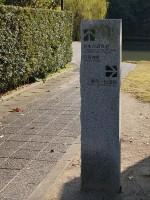 柳川の遊歩道