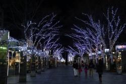 静岡ライトアップ