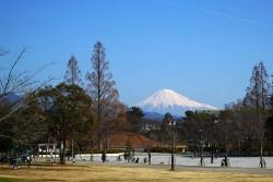 駿府城公園から見る富士山