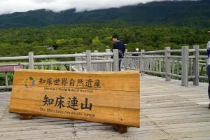 知床五湖高架木道