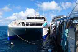 クルーズ船とポンツーン