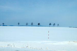 女満別の雪景色