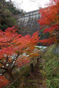 布引貯水池のダム