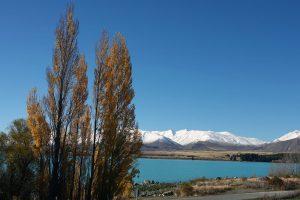 ニュージーランド・テカポ湖
